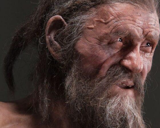 """Ecco com'era Ötzi, l'uomo preistorico """"venuto dal ghiaccio"""""""