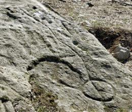 Le incisioni rupestri