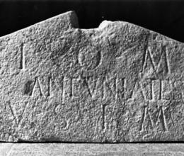 Lapidario di Como: visita organizzata