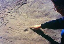 Coppelle preistoriche: antiche incisioni rupestri