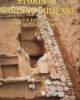 Storia di Mariano Comense Vol.1